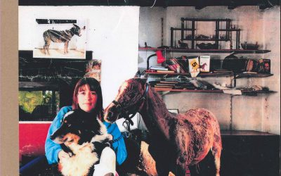 In memory of Gwilym…our 'live-in' foal